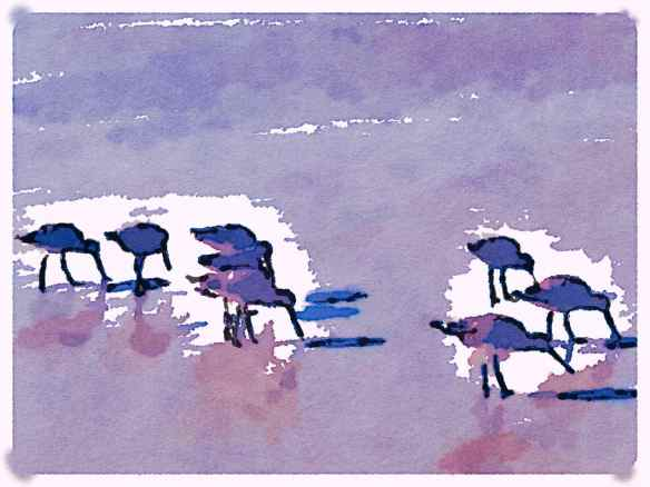 Waterlogue - Blotted