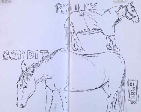 H-horses1