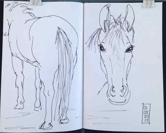 H-horses2